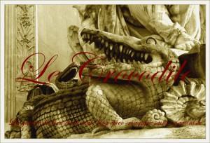 Crocodile Cuvier bannière